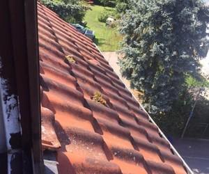 Nettoyage de toiture (avant) - Clean Service Renova