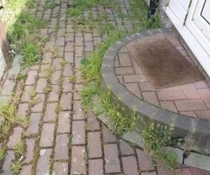 Entretien de façade (avant) - Clean Service Renova